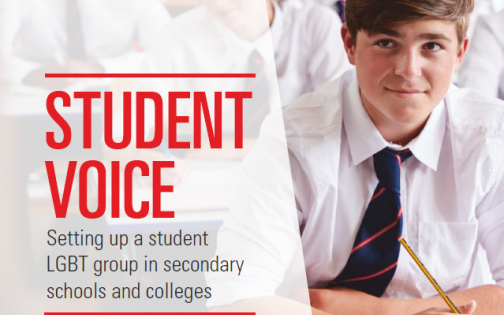 Front cover of student voice guide